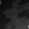 toonamifan666's avatar