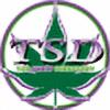 TopShelfDirectory's avatar