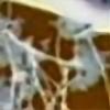 torn-ragdoll's avatar