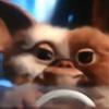 tortorkins's avatar