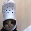 tossboy's avatar