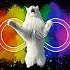 ToygerCat's avatar