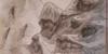 TraditionalArtwork's avatar