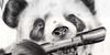 TraditionalCreators's avatar