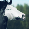trainwreck-carousel's avatar