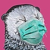TrampLamps's avatar