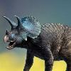 Triceratops1021's avatar