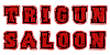 Trigun-Saloon's avatar