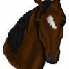 TrueHorseLover165's avatar
