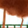 Truekung's avatar