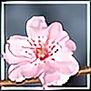 Tsolaelia's avatar