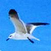 TTM77's avatar