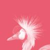 tummygummy's avatar