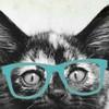 TummyMonster's avatar