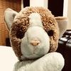 TurahRaymond's avatar
