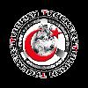 TurkishTruckers's avatar