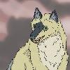 tusskaa's avatar