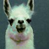 Tuttatin's avatar