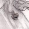 tuzenfouting's avatar