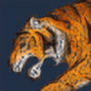 TwentyFifthFrame's avatar