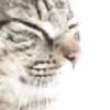 Twiil's avatar
