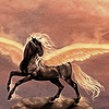 Twilight-Veil's avatar
