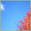 TwilightComplex's avatar