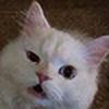 Twiztidpiksi's avatar