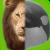 twoworldsonekingdom's avatar