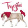 Tygiir's avatar