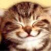 TypeSly's avatar