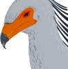 Tyrannoraptoran's avatar