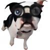 udharpa's avatar