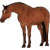 ultra-eq's avatar