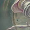 UncomparedBeauty's avatar