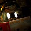 undertaleandotheraus's avatar