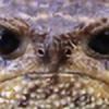 Uralowa's avatar