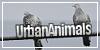 UrbanAnimals's avatar