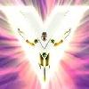 V-the-king's avatar