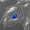 Vadnika's avatar