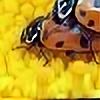 valerioandrade's avatar