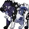 Valieh's avatar