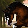 Valkyrie-Vixen-Art's avatar