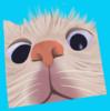 VallieVio's avatar