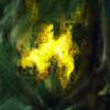 vangerianin's avatar