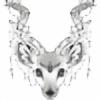 Vanilope's avatar