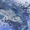 VariaJay's avatar