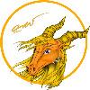 VedranR's avatar