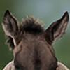 veheikk's avatar