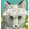 VeiledIridescence's avatar